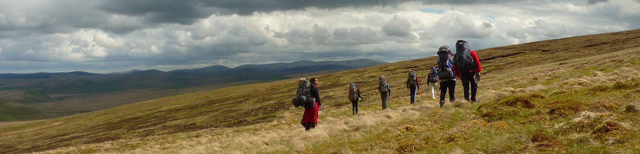 the wilderness foundation uk