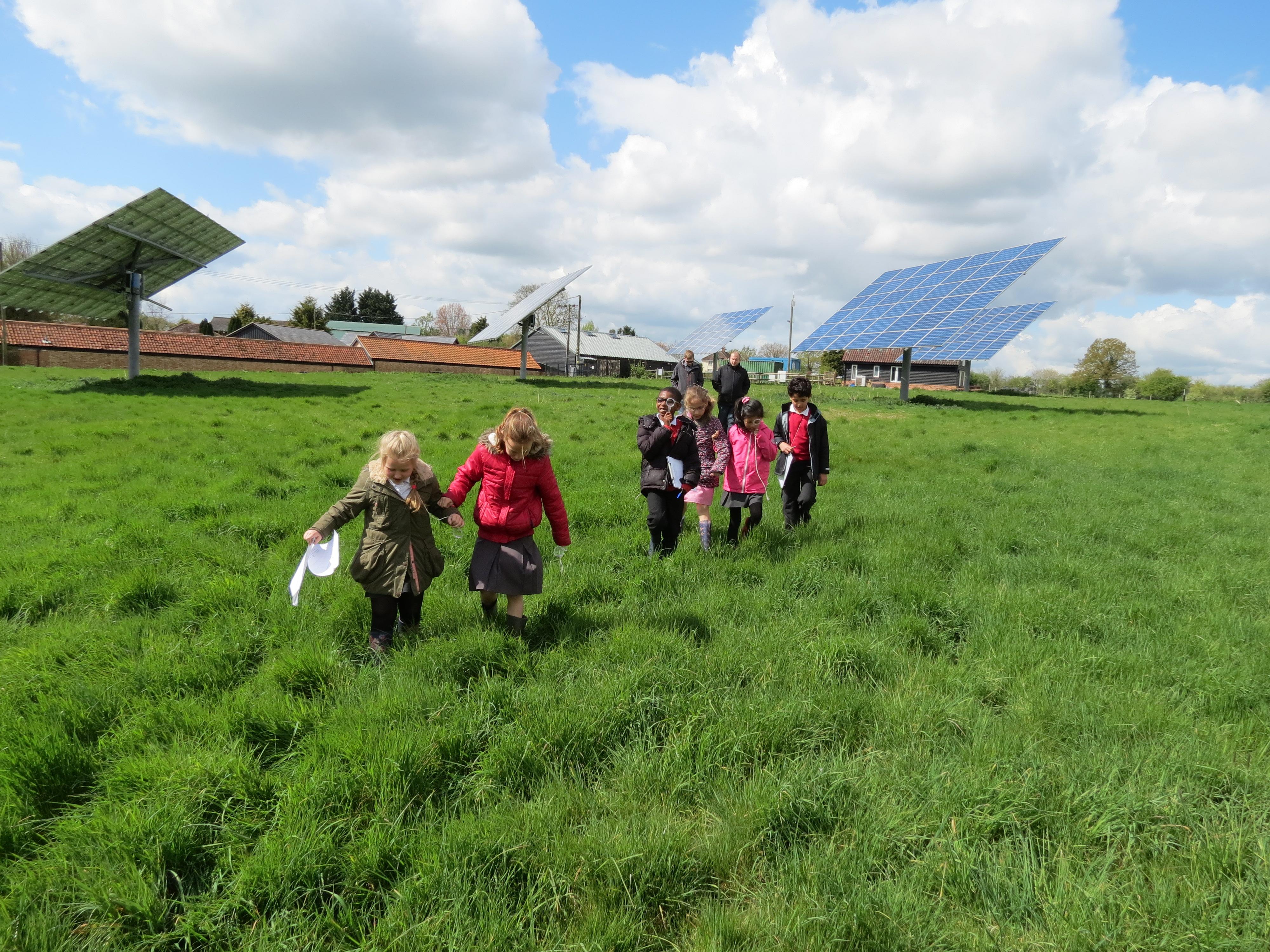 Chatham Green School Visits